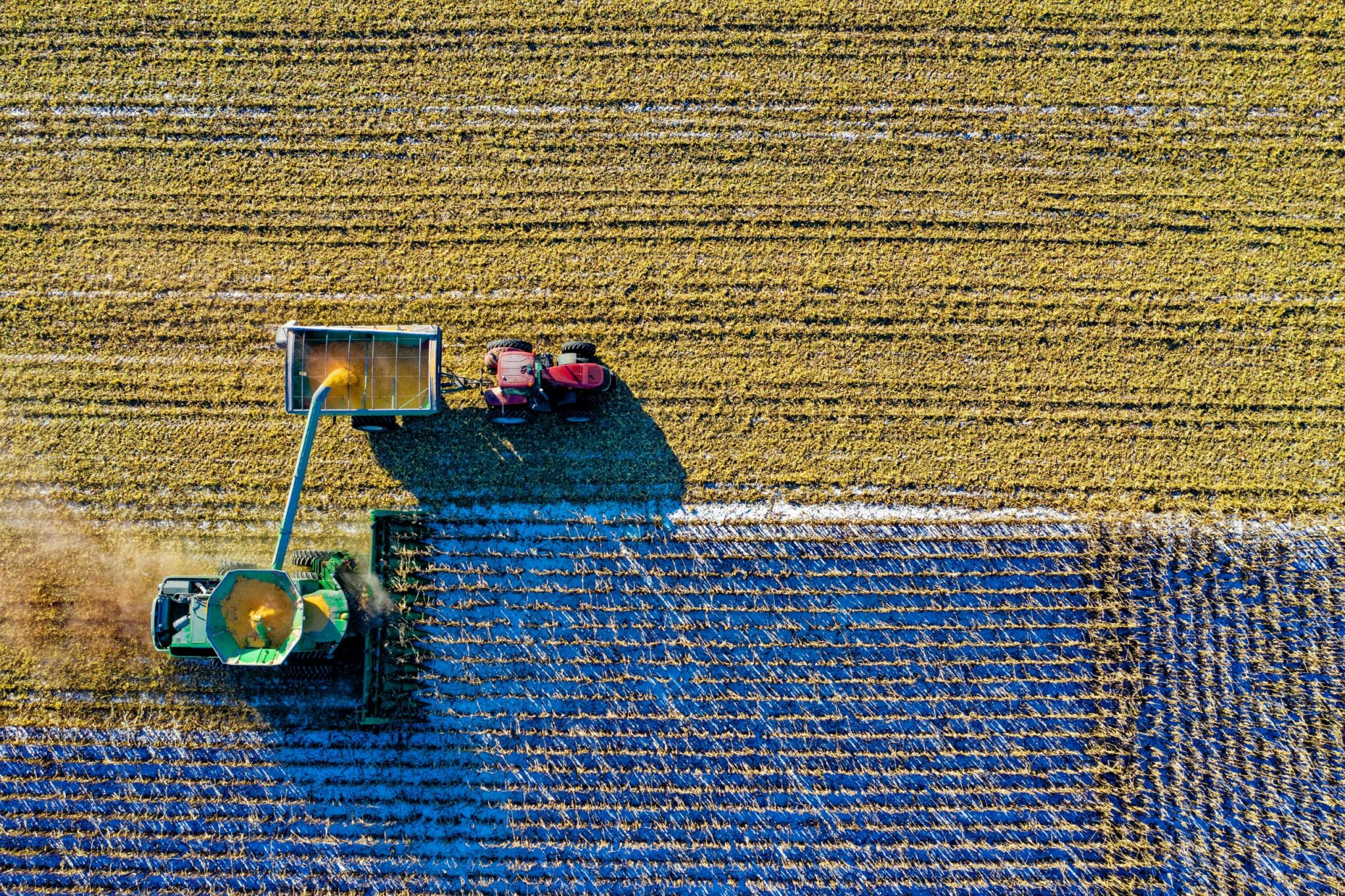 7 Lessons Your Business Should Learn From Farming